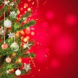 Vánoce - ozdobená větvička