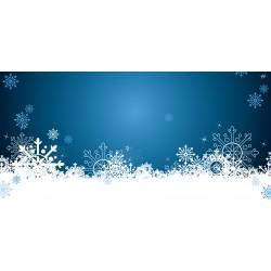 Vánoce - modré vločky - čokoláda 100g (6 ks)