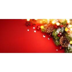 Vánoce - větvička s ozdobami - čokoláda 100g (6 ks)