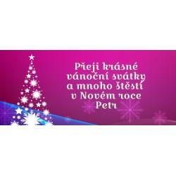 Vánoce - stromeček (fialová) - čokoláda 100g (6 ks)