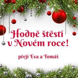 Vánoce - větvička + červené koule