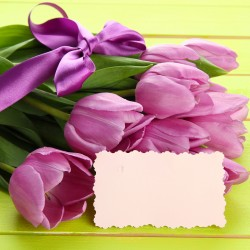 Tulipány fialové s kartičkou s věnováním