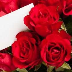 Červené růže + kartička s věnováním