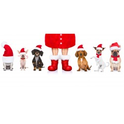 Veselé Vánoce - čokoláda 100g (6 ks)
