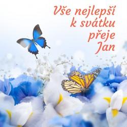 Motýlci a modré květy