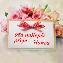 Růže + kartička s mašlí