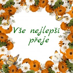 Žluté a bílé květy a motýlci - rámeček