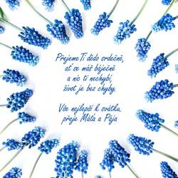 Květiny modré - rámeček