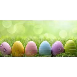 Velikonoce - barevná vajíčka v trávě - čokoláda 100g (6 ks)